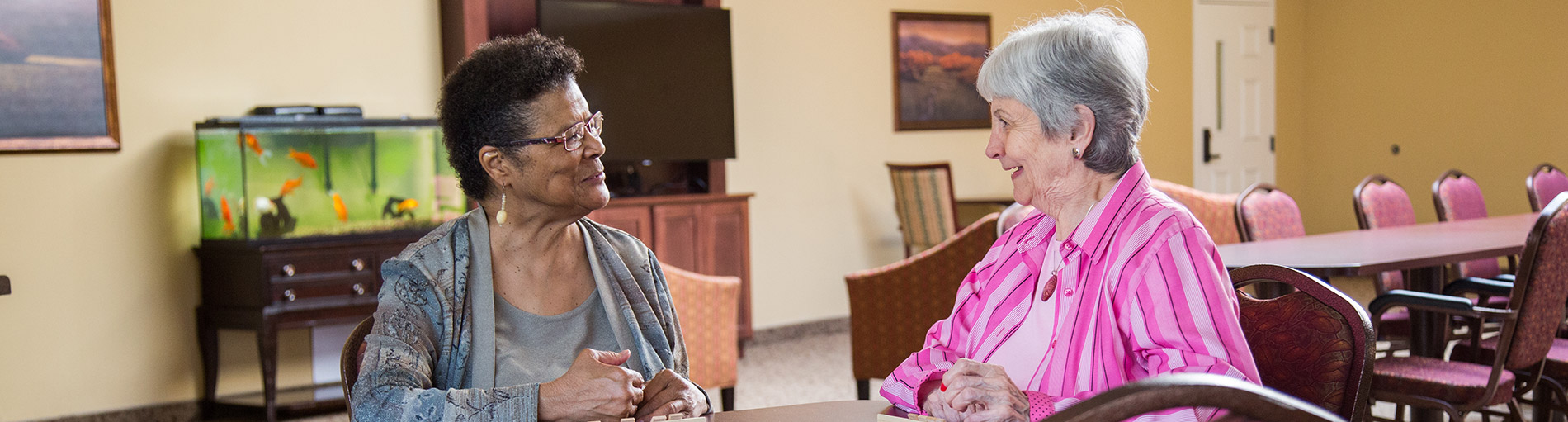 Senior Living Activities and Opportunities in MN